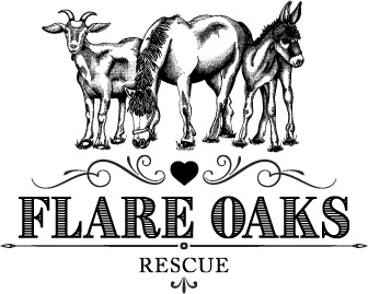 Flare Oaks Rescue – Rutherford County, NC
